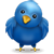 Twitter application development